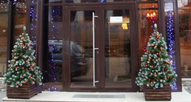 алюминиевые двери 3